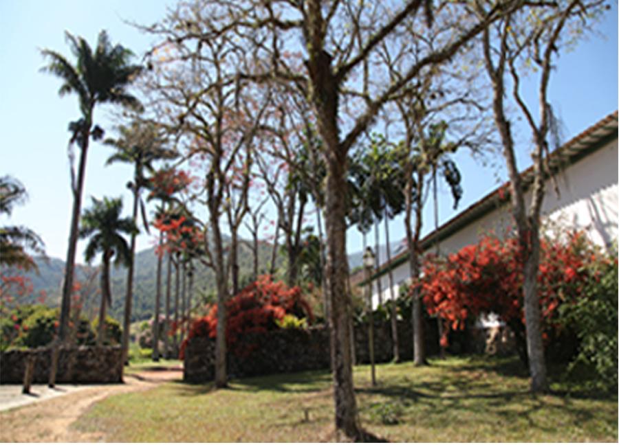 Arredores da Casa e Horta