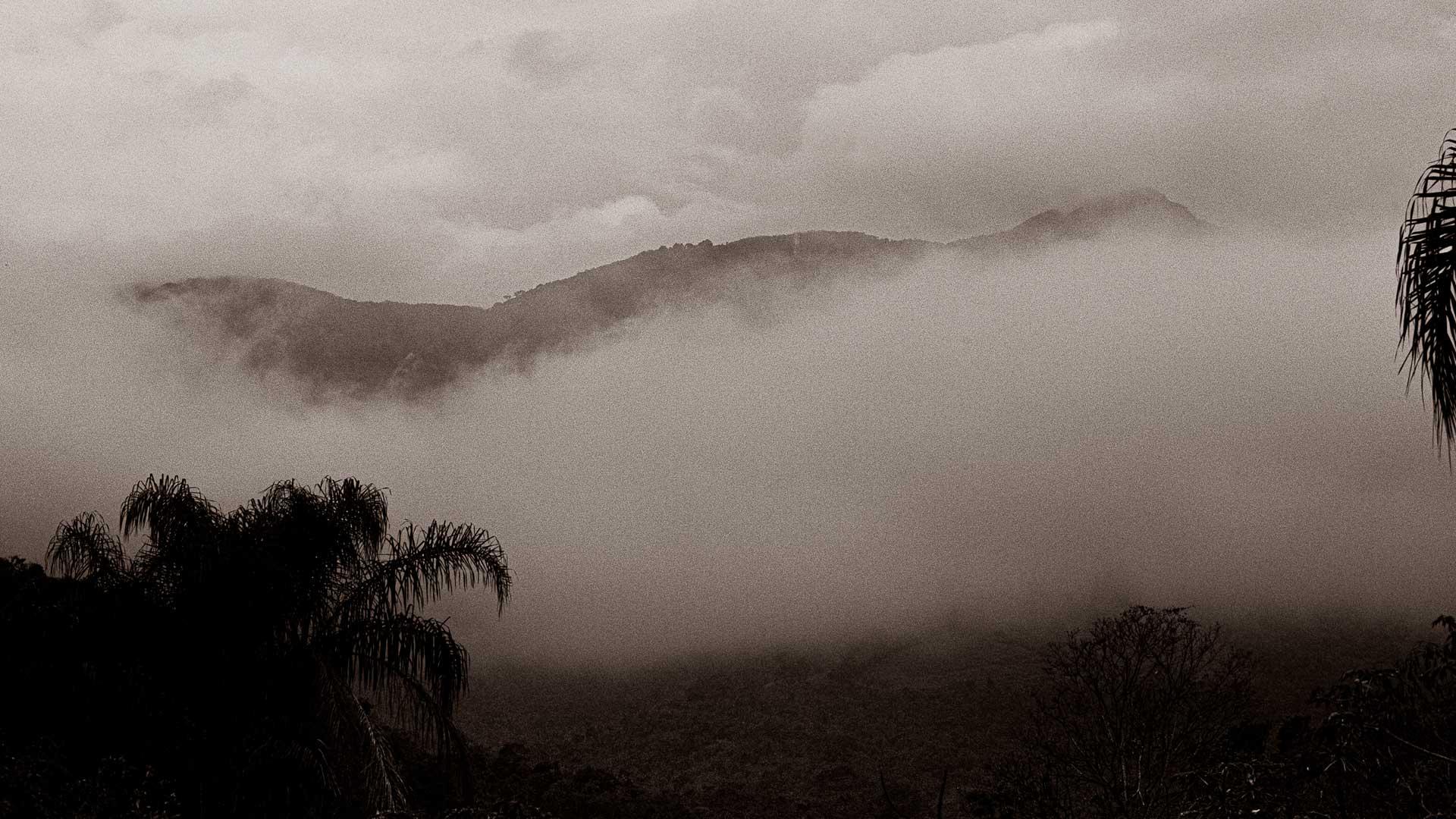 Fotografia de João Gomes - Fazenda Vargem Grande - Areias/SP